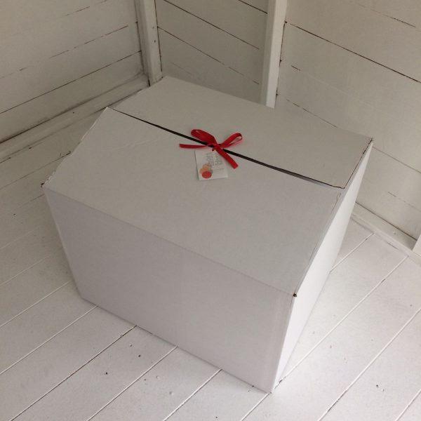Balloon in a box.