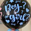 gender revael balloon boy or girl